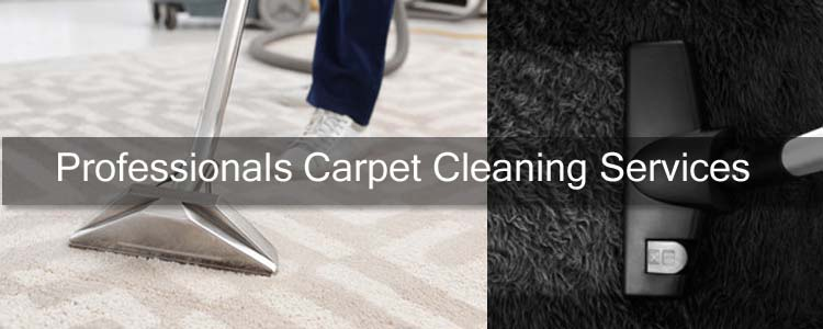 Professionals Carpet Cleaning